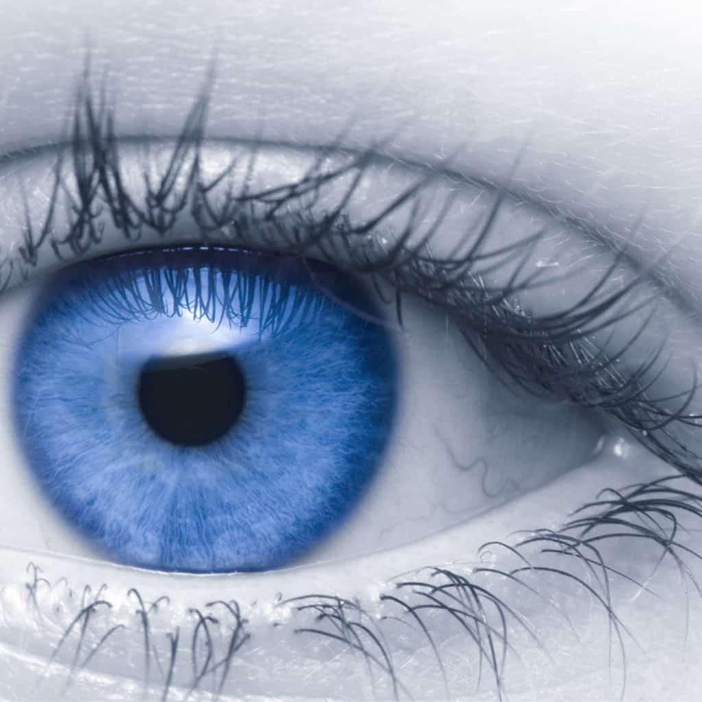 Optiker Sandhausen - Augenoptisches und optometrisches Zentrum Optik Mattern - Ihr Optiker in Sandhausen. Umfassende und kompetente Sehberatung bei Optik Mattern